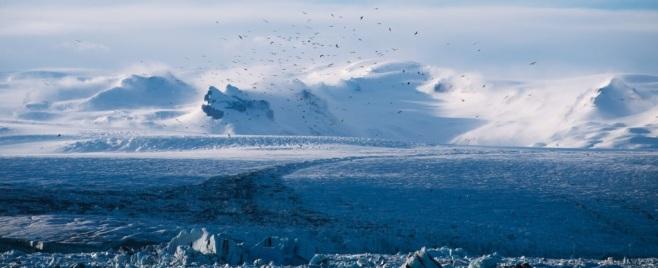 Alaska Glacier2